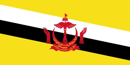 Đại sứ quán Việt Nam tại DARUSSALAM, Brunei Darussalam