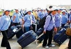 Trà Vinh hỗ trợ gia đình chính sách đi lao động ở nước ngoài